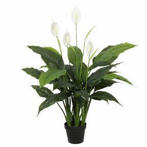 Umělá rostlina lopatkovec 108 cm