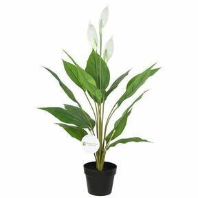 Umělá rostlina lopatkovec 95 cm