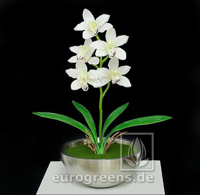Umělá rostlina Orchidea Cymbidium krémová 50 cm