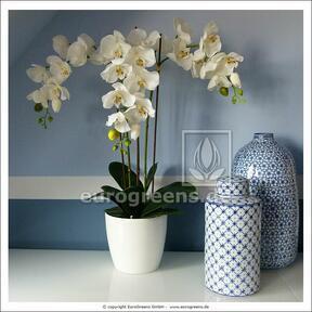 Umělá rostlina Orchidej bílá 60 cm