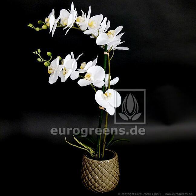Umělá rostlina Orchidej bílá 65 cm