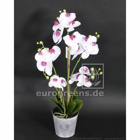 Umělá rostlina Orchidej bílo-fialová 60 cm