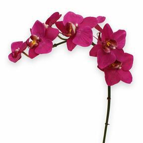 Umělá rostlina Orchidej fialová 80 cm
