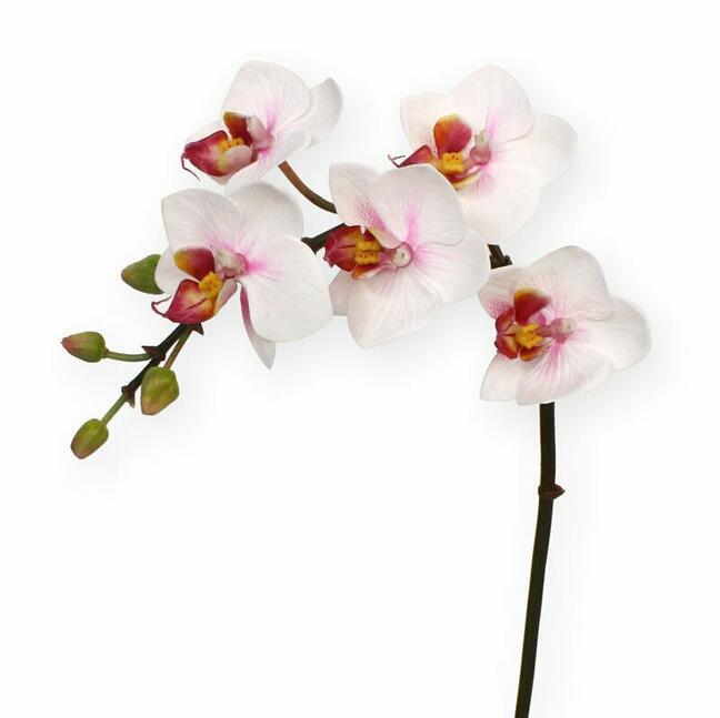 Umělá rostlina Orchidej růžová 50 cm