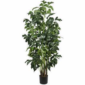 Umělá rostlina Palicha 160 cm