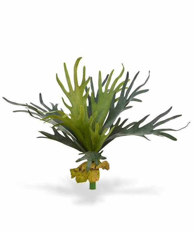 Umělá rostlina Parožnatka 50 cm