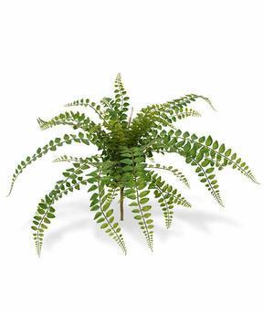 Umělá rostlina Rotundifolia 55 cm