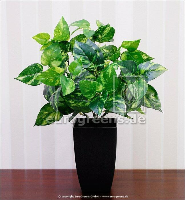 Umělá rostlina Scindapsus 40 cm