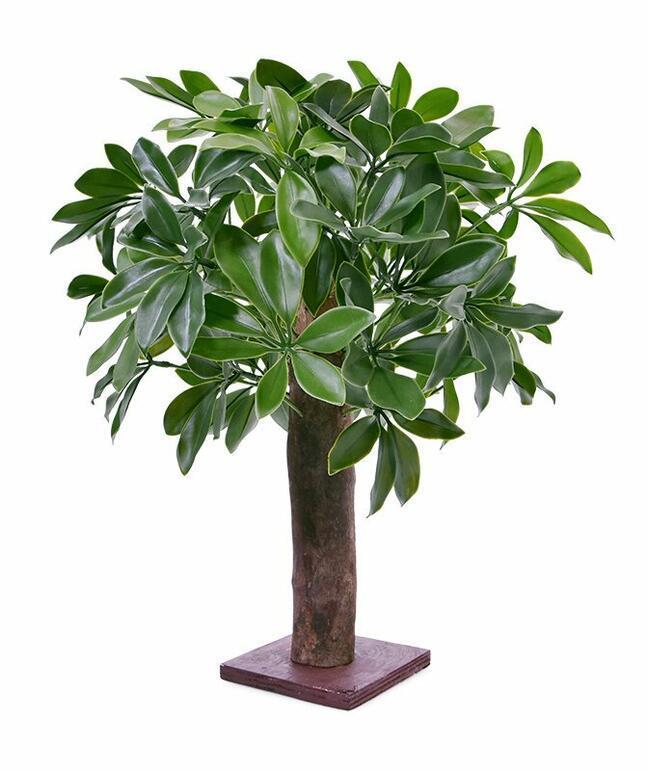 Umělá rostlina Šeflera 50 cm