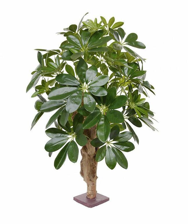 Umělá rostlina Šeflera 65 cm