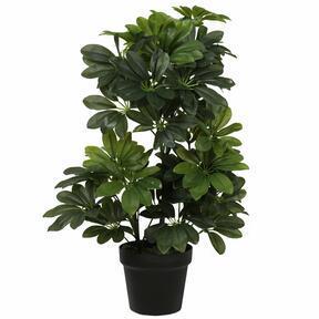 Umělá rostlina šeflery 60 cm