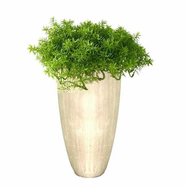 Umělá rostlina Senecio 30 cm