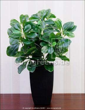 Umělá rostlina Švestka domácí 40 cm
