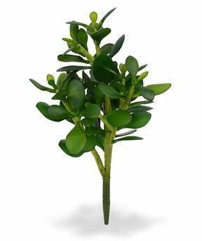 Umělá rostlina Tlustice 30 cm