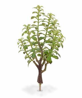 Umělá rostlina Tlustice 40 cm
