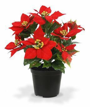 Umělá rostlina Vánoční růže červená 40 cm
