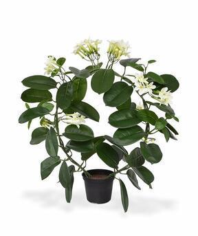 Umělá rostlina Vencovec květnatý 40 cm