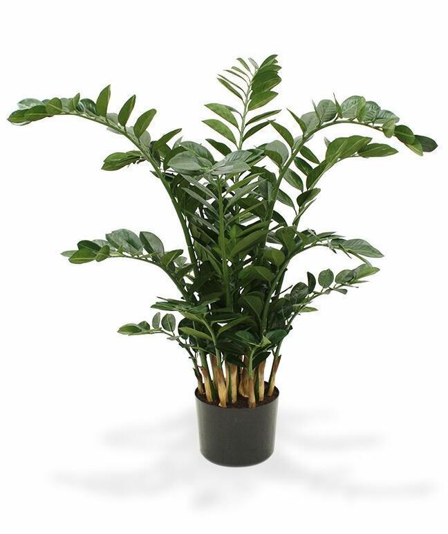 Umělá rostlina Zamiokulkas 120 cm
