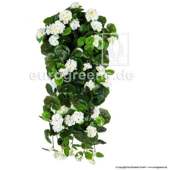 Umělá úponka Pelargónie bílá 70 cm