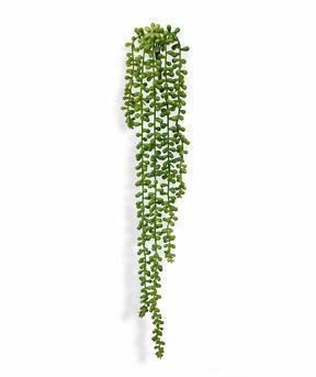 Umělá úponka Senecio 55 cm