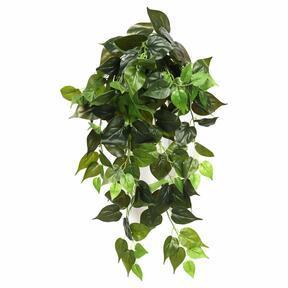 Umělá úponky Philodendron Cordatum 80 cm