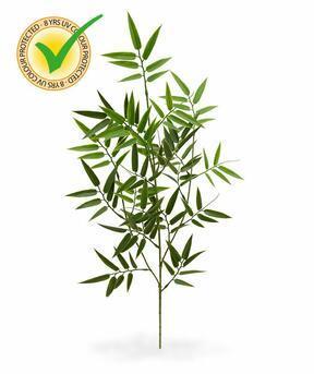 Umělá větev Bambus 65 cm