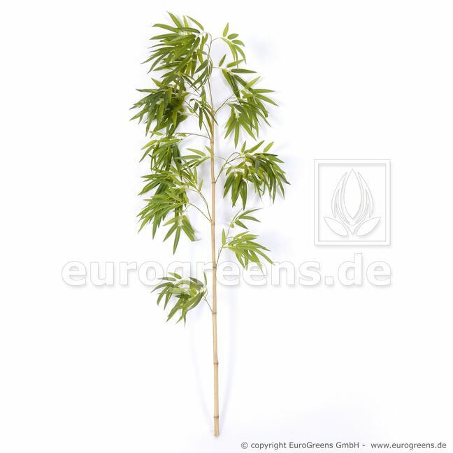 Umělá větev Čínský Bambus 150 cm