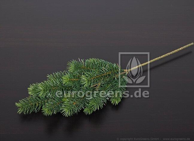 Umělá větev Jedle 65 cm