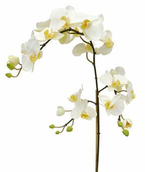 Umělá větev Orchidej bílá 110 cm