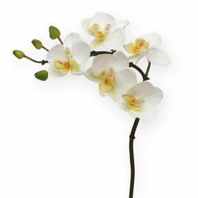 Umělá větev Orchidej bílá 50 cm