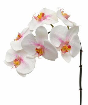 Umělá větev Orchidej růžovo-bílá 55 cm