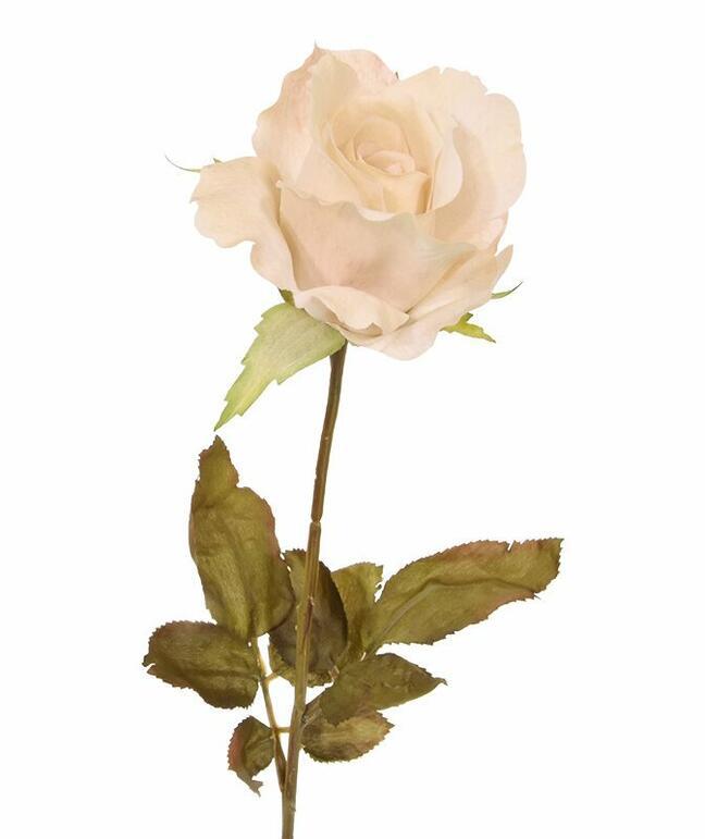 Umělá větev Růže krémová 60 cm