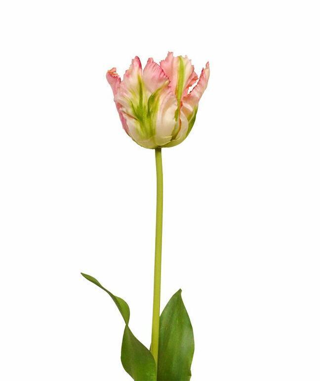 Umělá větev Tulipán zeleno-růžový 70 cm