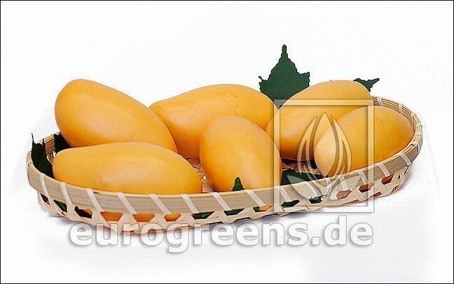 Umělé Mango žluté