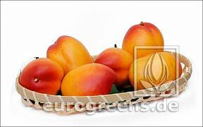 Umělé Mango žluto-červené