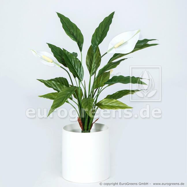 Umělou rostlina Toulcovka 50 cm