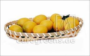 Umělý citron