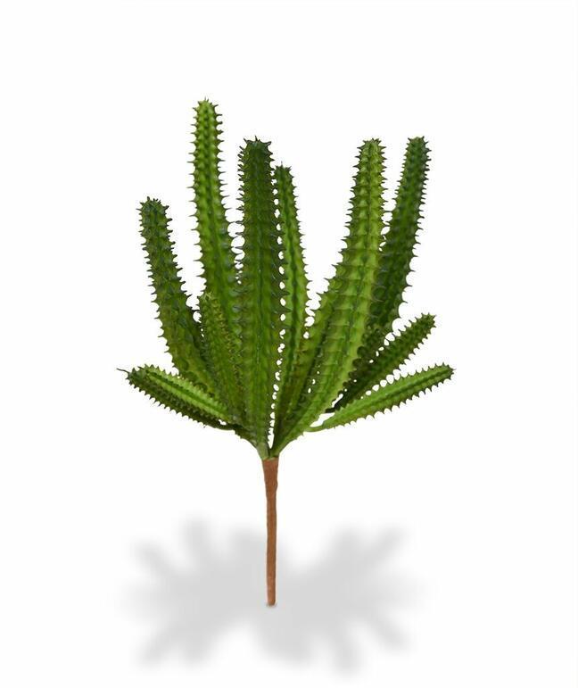 Umělý kaktus Euphorbia 20 cm