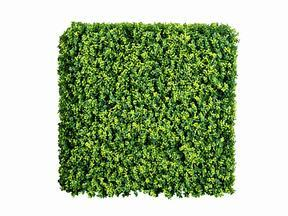 Umělý květinový panel Buxus - 50x50 cm