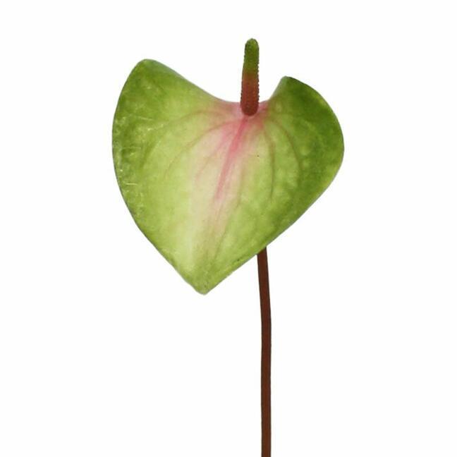 Umělý list Anthurium růžovo-zelený 50 cm