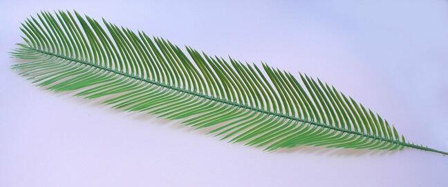 Umělý list palma Cycas 80 cm