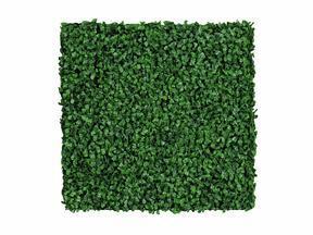 Umělý listnatý panel Buxus - 50x50 cm