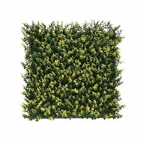 Umělý panel Buxus - 50x50 cm