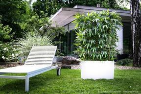 Umělý plot Bambus 180 cm