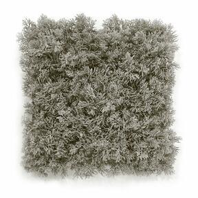 Umělý šedý mechový panel - 25x25 cm