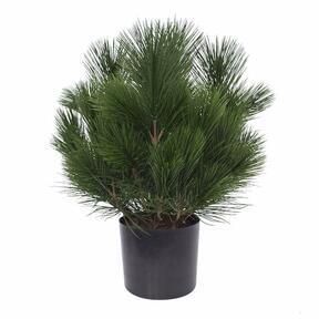 Umělý strom Borovice 45 cm