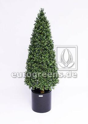 Umělý strom Buxus kuželovitý 80 cm