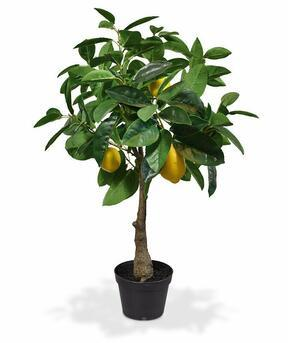 Umělý strom Citrónovník 70 cm
