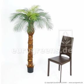 Umělý strom Datlovník kanárský 170 cm