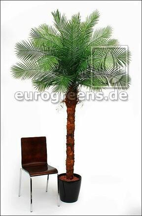 Umělý strom Datlovník kanárský 240 cm